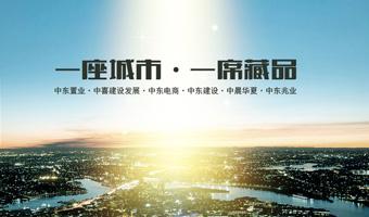 中东集团雷火app官网下载建设项目