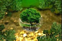 助力环保,责任与共!